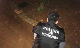Incautaron más de 10 kilos de marihuana en Puerto Libertad