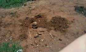 Hallazgo macabro: imágenes exclusivas de MisionesCuatro