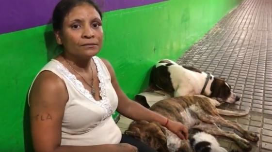 Se quedó sin casa y vive en la calle con sus perros
