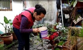 A prevenir el dengue luego de las lluvias