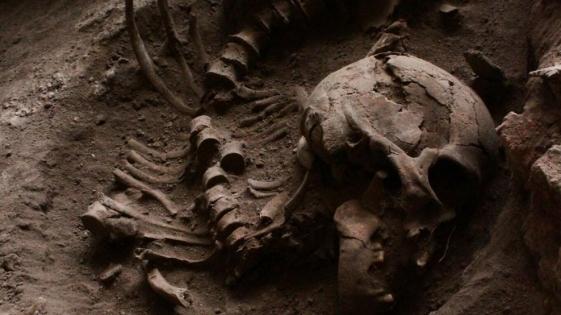Importante descubrimiento sobre expansión del Sapiens en América