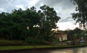 Daños ocasionados por el temporal en Misiones