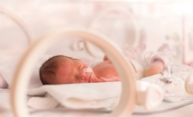 Semana del prematuro: el rol familiar en la internación