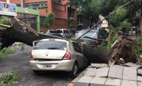 Buenos Aires: más de 70 mil usuarios sin luz por la tormenta