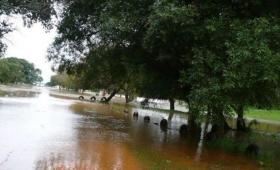 Santo Tomé: alerta por crecida del río y desborde de arroyos