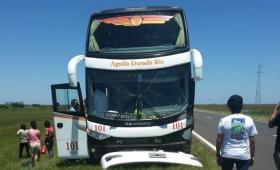 Un colectivo chocó una vaca; 14 pasajeros heridos