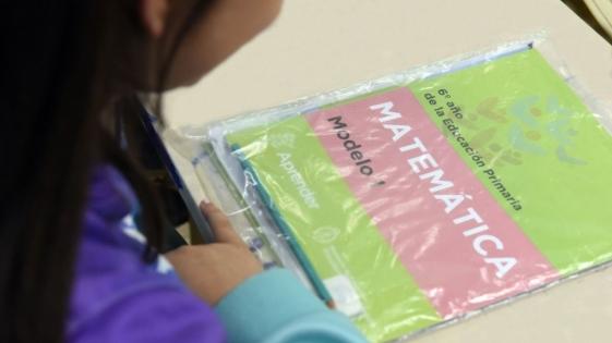 Aprender 2018: Misiones mejoró en lengua y matemática