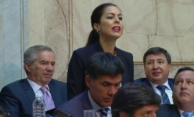 "La ""falsa diputada"" que irrumpió en el recinto para gritar contra Macri"