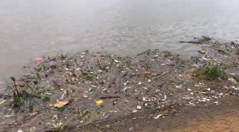 Impresionante cantidad de basura en la costa del río