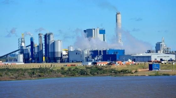 Impulsarán en el Senado, proyecto para la instalación de pasteras en Corrientes