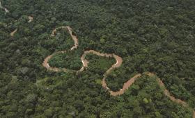Daño al planeta: se triplicó extracción de recursos naturales