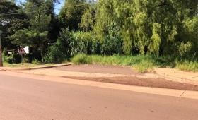 La vegetación se tragó una calle en Garupá