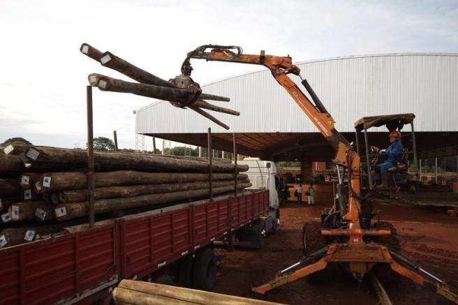 """Éxodo maderero: """"No compramos madera en Misiones por los impuestos"""""""