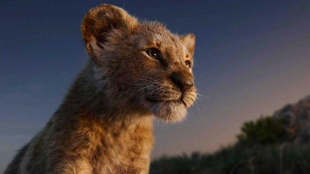"""""""El Rey León"""", primera en recaudación con 185 millones de dólares"""
