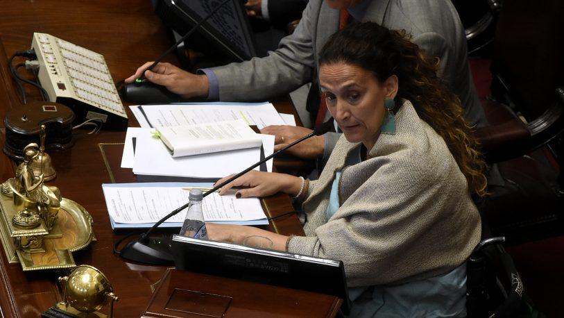 Senado: Michetti prohibió el canje de pasajes por dinero