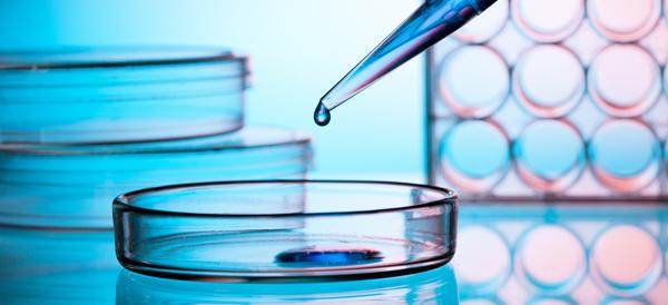 Inmunoterapia: tratamiento para combatir varios tipos de cáncer