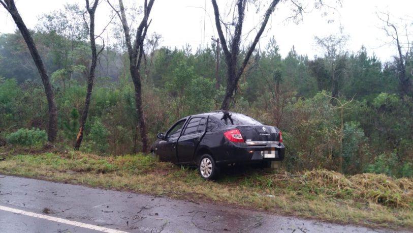 Perdió el control, despistó y chocó un árbol