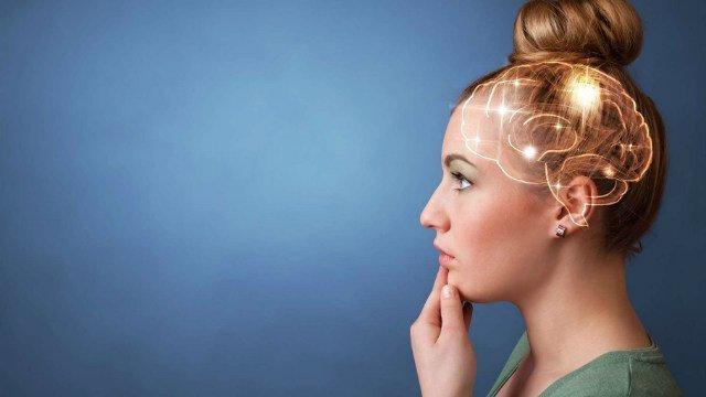 Lo bueno, lo malo y los recuerdos: cómo el cerebro toma decisiones