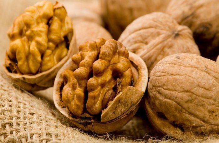 Por primera vez, Neuquén exportó nueces a Italia