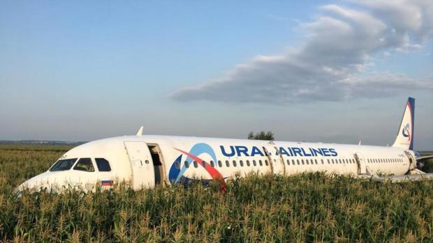 Bandada de pájaros obliga a un avión ruso a aterrizar de emergencia