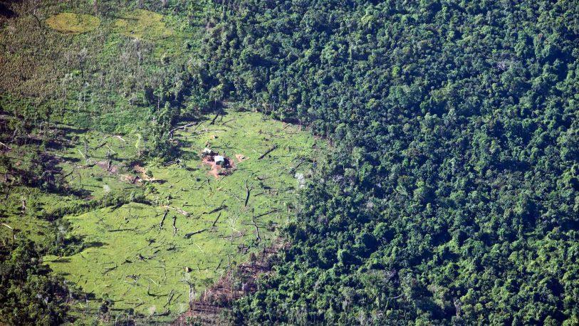 La ONU plantea cambiar la alimentación para frenar el cambio climático