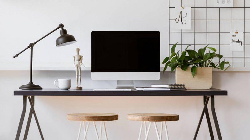 Conocé los beneficios de tener una planta en tu escritorio