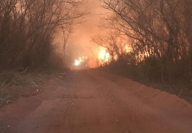 Paraguay: 100 mil hectáreas arrasadas por incendios forestales