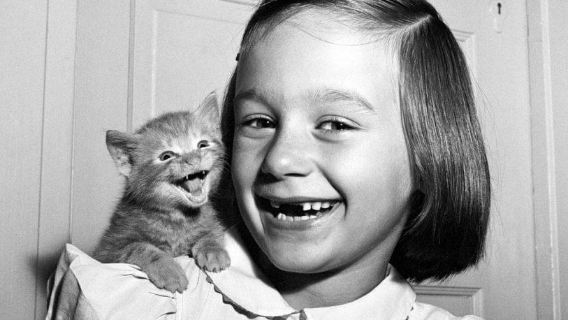 Walter Chandoha, el pionero de la fotografía de gatos