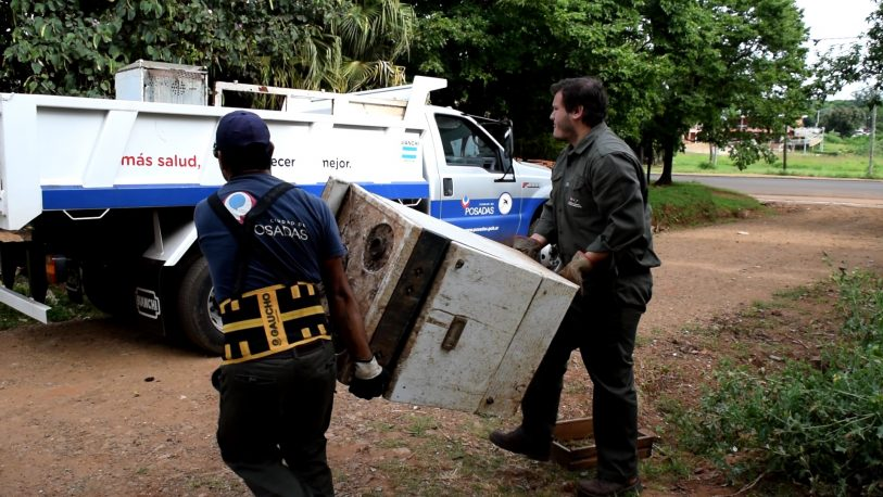 Operativo dengue: retiran más de 24 toneladas de cacharros