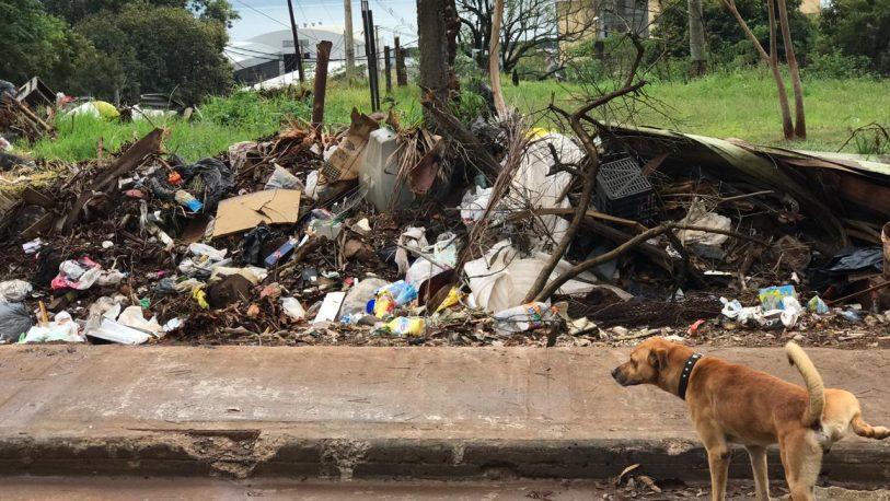 Porto dijo que es normal que se acumule basura en la calle tras feriado puente
