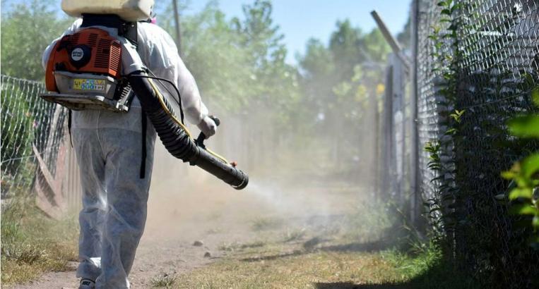 Dengue: fumigan pasos fronterizos como medida preventiva