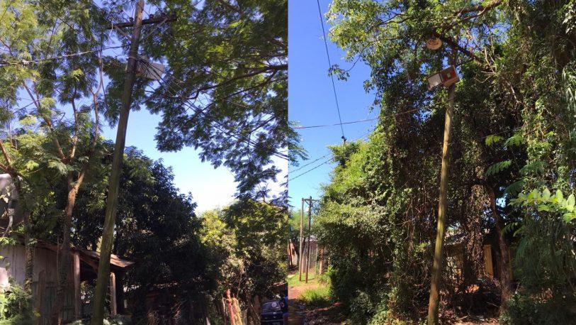 Alerta en la Chacra 158 por postes que están a punto de caerse