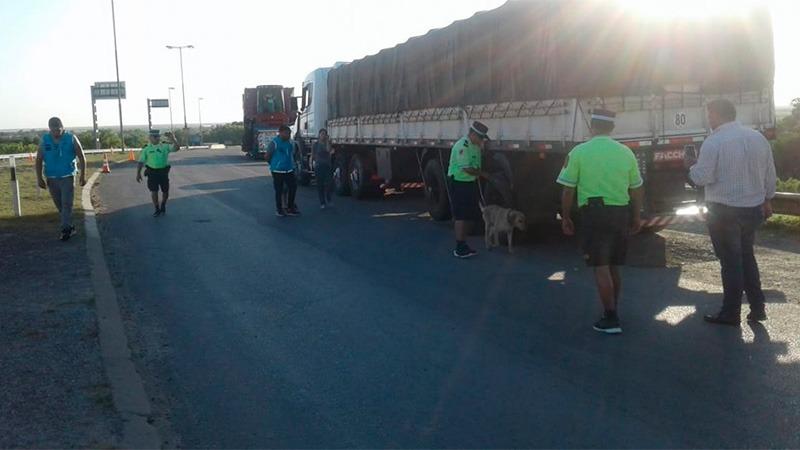 Camionero detenido con una tonelada de droga que ingresó por San Javier