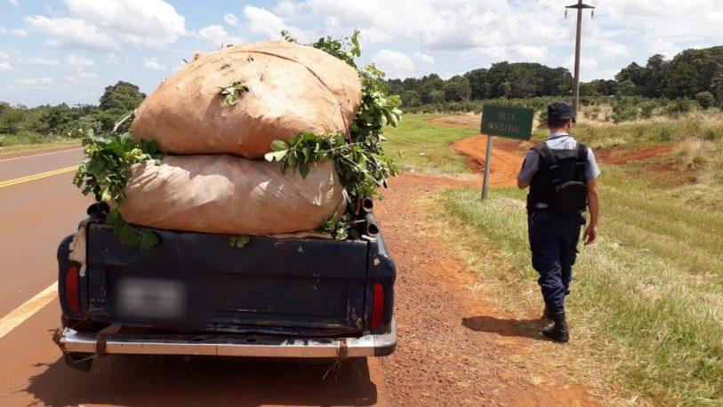 Interceptaron una camioneta cargada de yerba mate robada