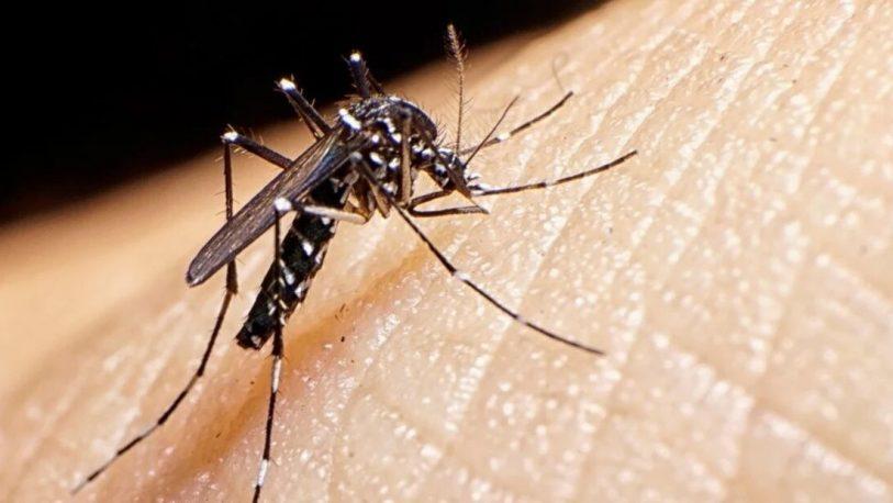 Ahora Salud Pública admite que habría 9 mil casos de dengue