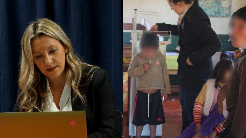 Dammer manejará un presupuesto de $2.213 millones y no informó sobre la cantidad de niños desnutridos de Misiones