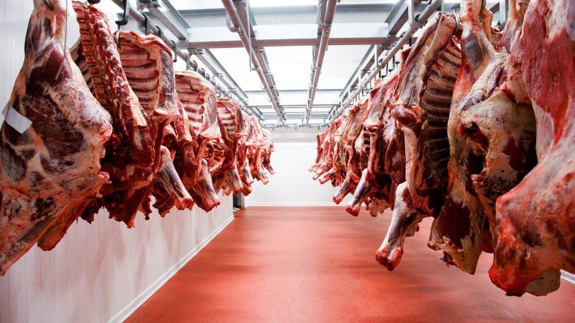 Exportación de carne: Para el campo, se quebró la credibilidad de la Argentina con el mundo