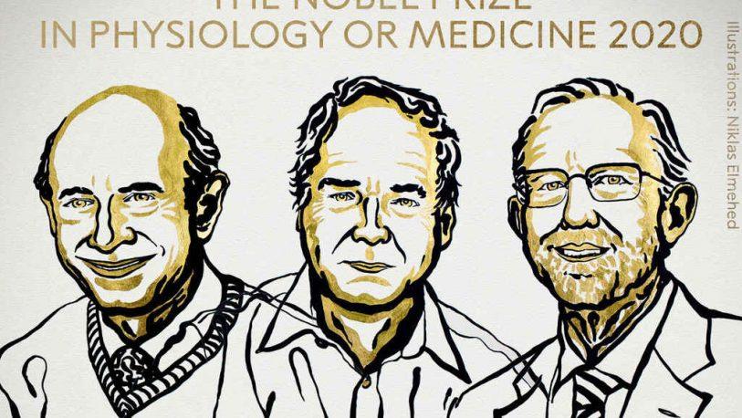 Nobel de Medicina para tres descubridores del virus de la hepatitis C