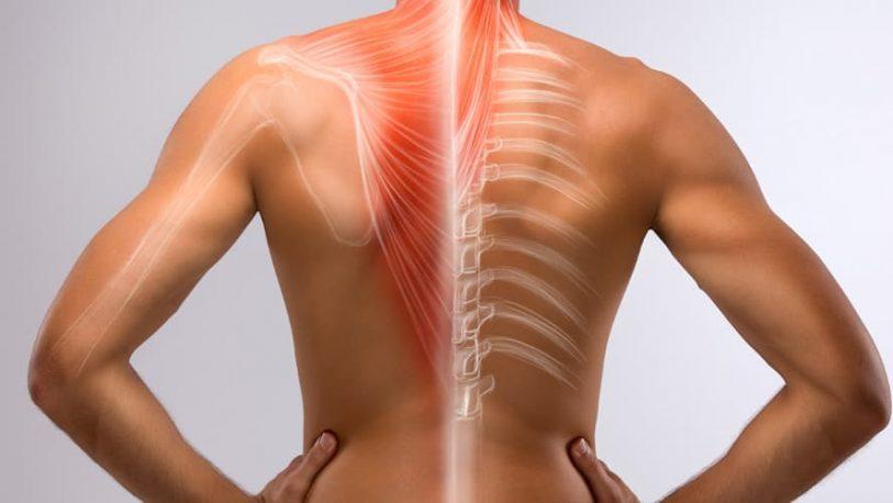 Columna vertebral: el principal problema es el aplastamiento