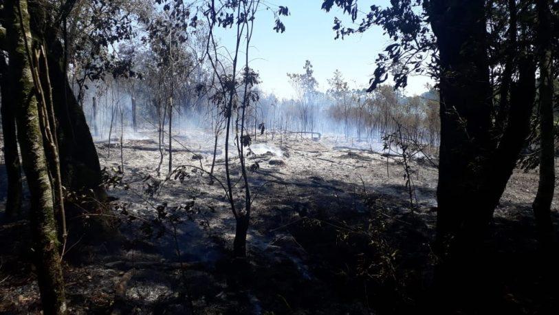Bomberos fueron agredidos a piedrazos mientras apagaban un incendio en Oberá