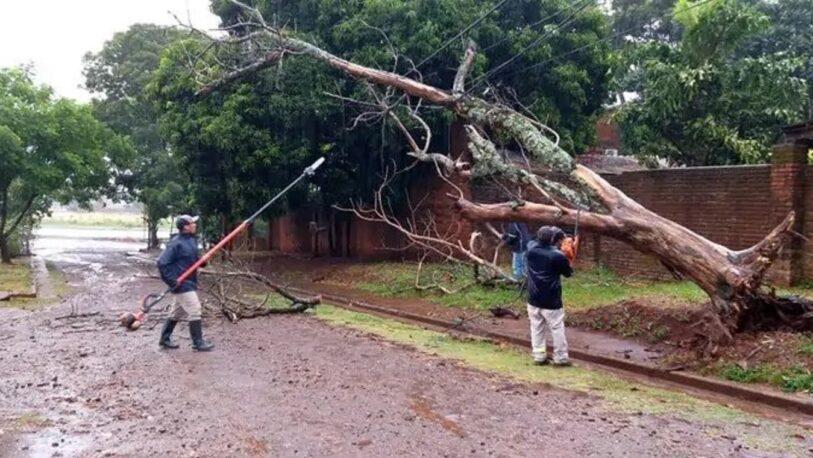 Una fuerte tormenta causó daños en Posadas