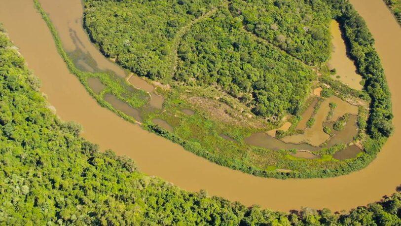 Ecología reconoció daño ambiental en Garuhapé y apuntó a Industria