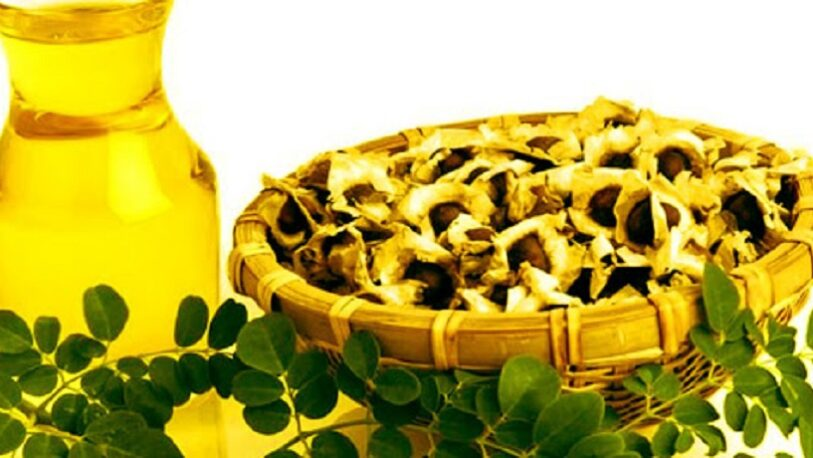 Usos y características del aceite de moringa
