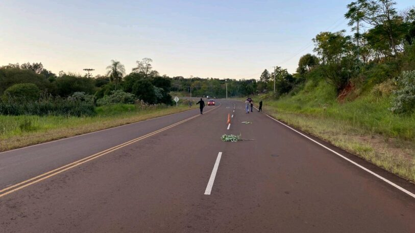 Una mujer fue hallada sin vida en la Ruta 27 e investigan si fue atropellada