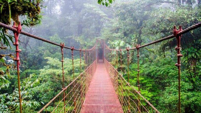 Costa Rica es líder del combate contra la desertificación en Centroamérica