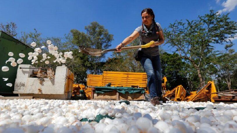 Cual es la iniciativa para limpiar uno de los ríos más contaminados de México