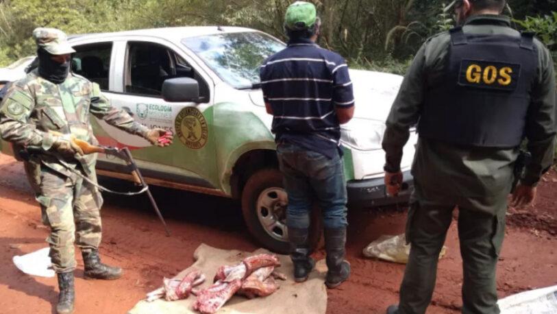 Caza furtiva: Dos demorados, secuestro de armas y tres ejemplares de pecarí labiado