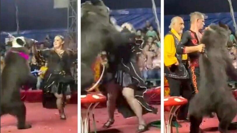 Un oso atacó a su entrenadora en medio de un show infantil