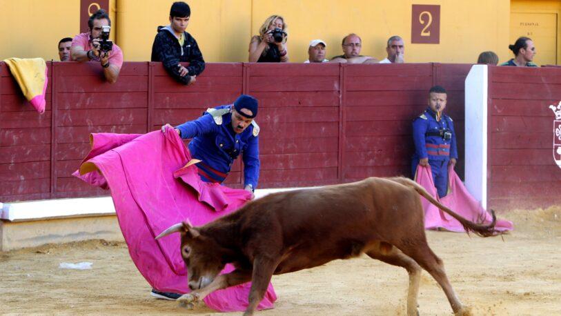 """Cancelan feria taurina tras participación de toros llamados """"Feminista"""" y """"Nigeriano"""""""