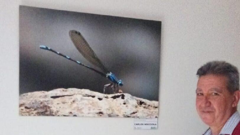 Nueva muestra fotográfica sobre paisajismo en Posadas